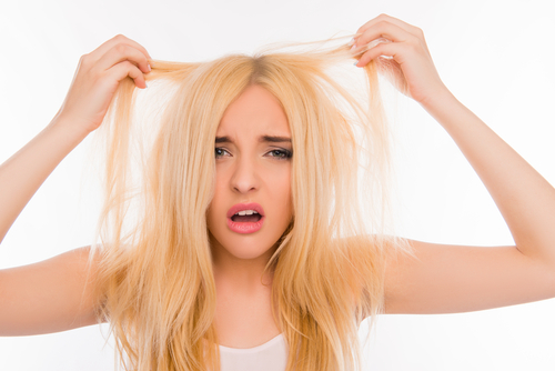 髪 乾燥 結び目