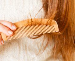 髪 パサパサ 食べ物